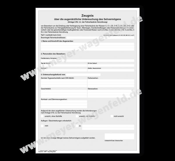 Führerscheingutachten für alle Klassen, DIN A4
